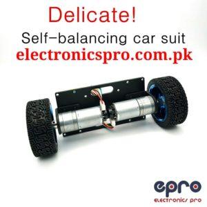 Self Balancing Robot Chassis With Wheel And Encoder Motors